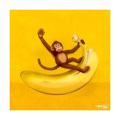 Rr15inch_0006_monkey_shop_thumb