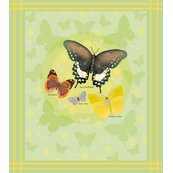 Rrdots_and_butterflies_shop_thumb