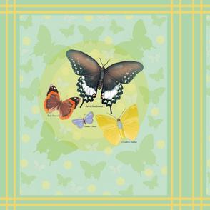 Dots_and_butterflies