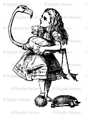 Aliceogflamingo
