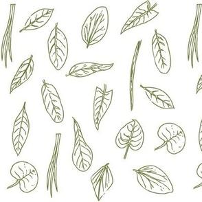 Identi-leaf