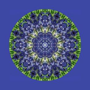1800 -Kaleidoscope