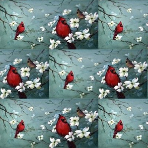 Cardinal on Dogwoods