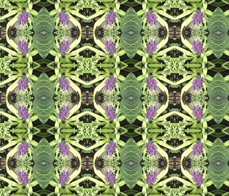 cortese_Bromeliads8i fabric by debracortesedesigns on Spoonflower - custom fabric