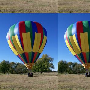 Summerville_Hot_Air_Balloon_Fest_11_16_08_024