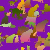Rrpurple_kitties_shop_thumb