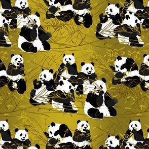 pandas-Pattern