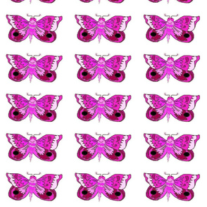 Purple_Moth_white