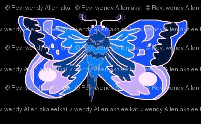 Blue_Moth_a