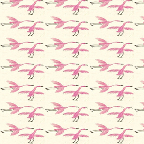 small--Flight_of_the_Flamingo