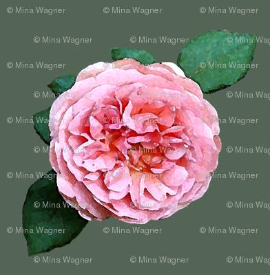Rose-wtrclr-GRN