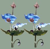 Rr2blue-poppies-med-grn_shop_thumb