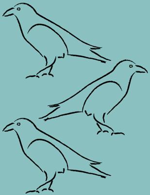 Raven-sketches-2mirror-GRN