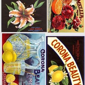 Corona fruit labels
