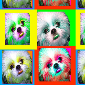Dog Portrait - andy warhol effect