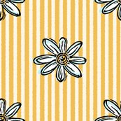 Rrrdaisystripe_sq_shop_thumb