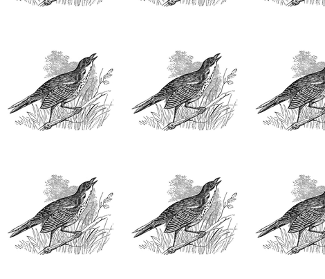 bird2 fabric by earwig on Spoonflower - custom fabric