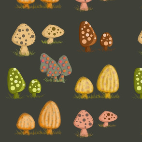 Mushrooms Dark Background