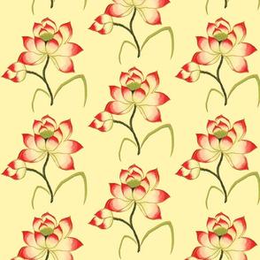 chineseflower