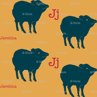 J is for Javelina