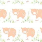 Rrrschweinchen2_shop_thumb