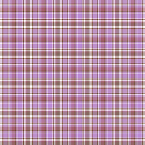 pansy_purple_edge_brown_and_purple_plaid_1