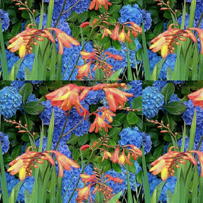 ORTENSIE_ORANGE_SPOONFLOWER