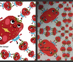Strawberry Blonde Callico Print
