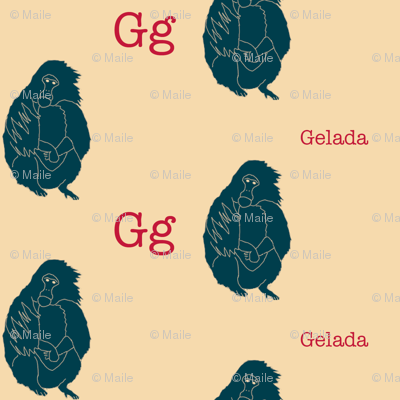 G is for Gelada