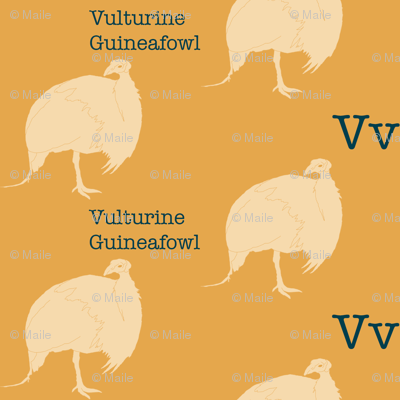 V is for Vulturine