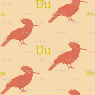 U is for Upupa