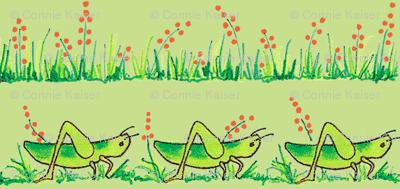green grasshopper3