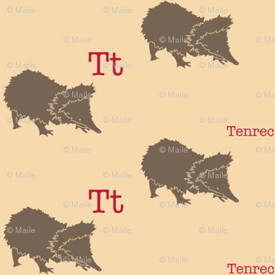 T is for Tenrec
