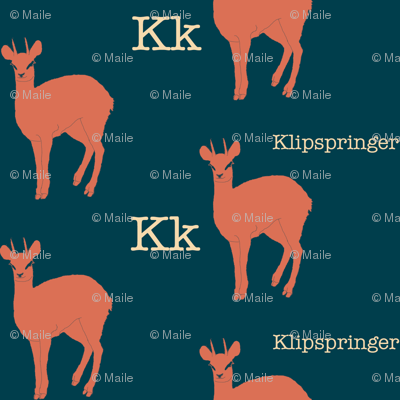 K is for Klipspringer