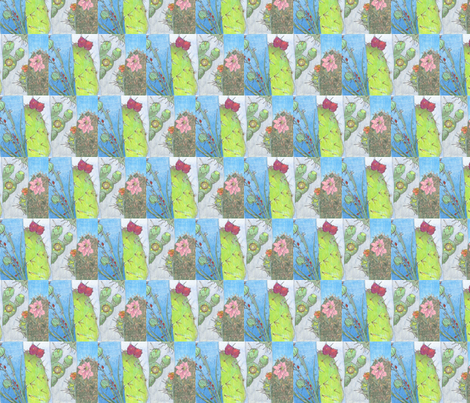 4cactus_study fabric by teastarr on Spoonflower - custom fabric