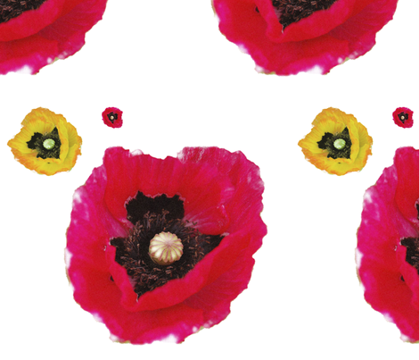 poppy fabric by sequingirlie on Spoonflower - custom fabric