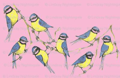 Birdies-ch