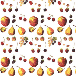 fruits_and_nuts