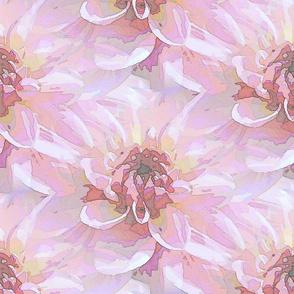 Pink lace dahlia
