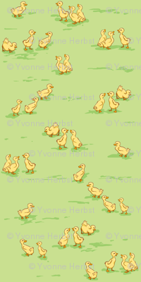 Little Baby Ducks on Green