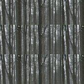 Rforest3_shop_thumb