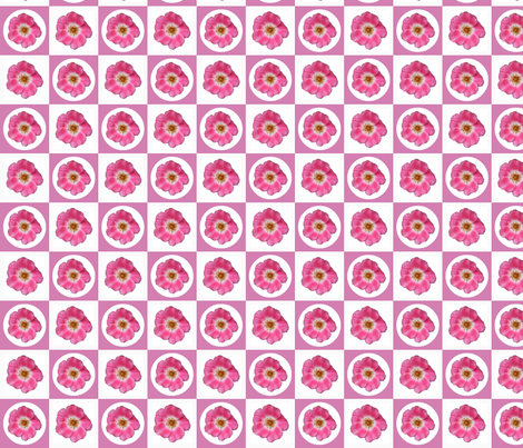 m_Picnik_collage_4_roses fabric by khowardquilts on Spoonflower - custom fabric
