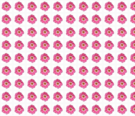 mf_rose_border_6_28_09_004 fabric by khowardquilts on Spoonflower - custom fabric