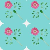 Rpicnik_collage__aqua_curve_big_leaves_rose_shop_thumb
