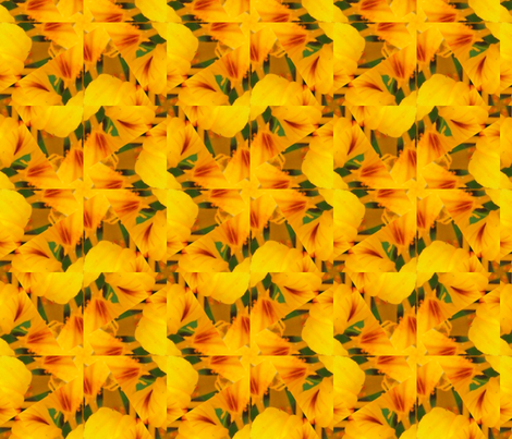 Picnik_collage_4x4-2a_nasturtium fabric by khowardquilts on Spoonflower - custom fabric