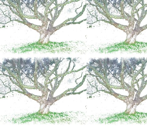 Ra_painted_tree_shop_preview