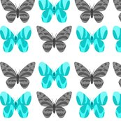 Rbutterflies_copy_shop_thumb