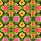 Rrrrr4_zinnias_45_poster_picnik_collage_shop_thumb