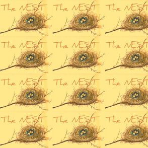 Experience the NEST-ed