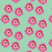 Single_roses_picnik_collage_shop_thumb